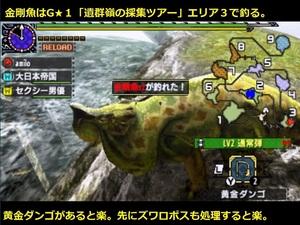 金剛魚 場所 釣り 黄金ダンゴ MHXX ダブルクロス.jpg